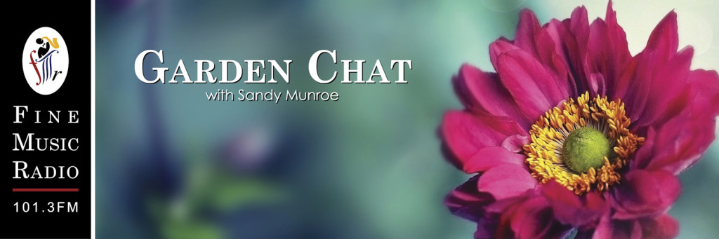 Garden Chat Channel Cover Artwork