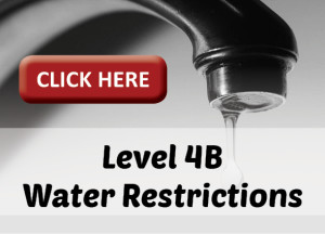 Water Restrictions Website Artwork